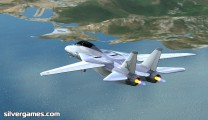 airplane simulator f 14 tomcat